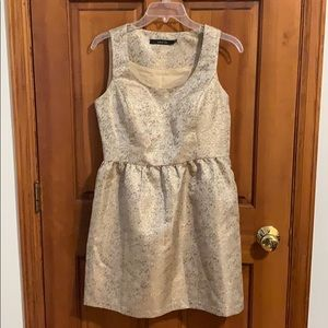 Ark & Co Gold Shimmer Mini Dress!